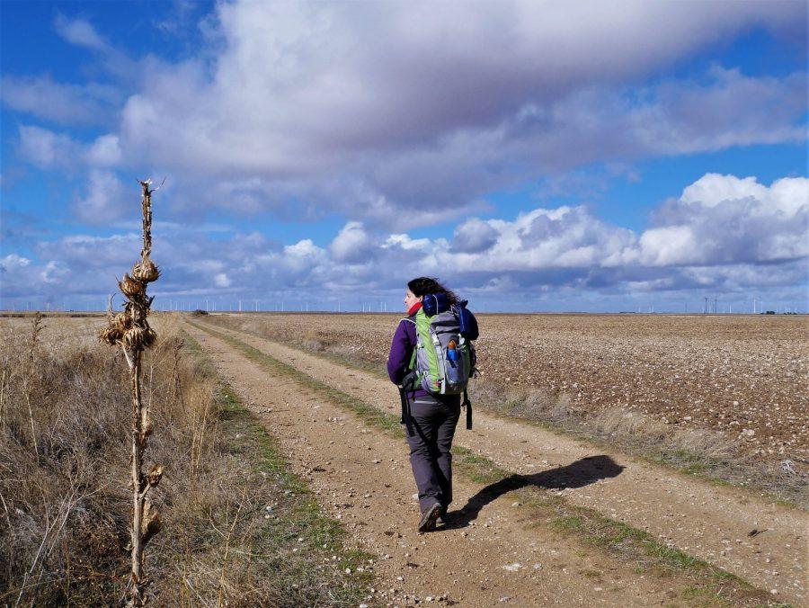 Camino de Madrid a Santiago por Valladolid