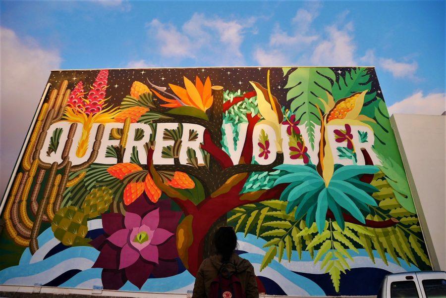 Arte urbano en los Llanos de Aridane