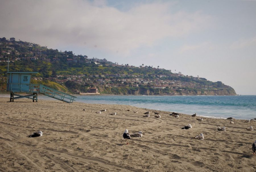 Redondo Beach, estudiar inglés en Los Ángeles