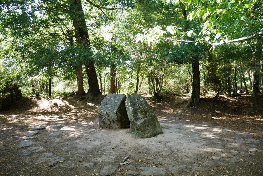 Tumba del mago Merlín en el bosque de Broceliande