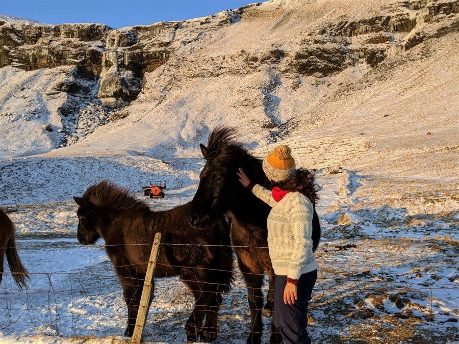7 años de la cosmopolilla, Islandia es un viaje que te cambia para siempre