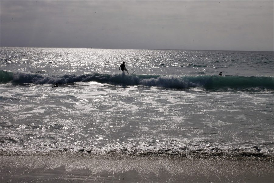 Surferos en las playas de Los Ángeles