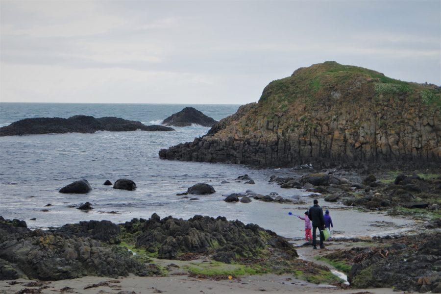Irlanda o Islandia