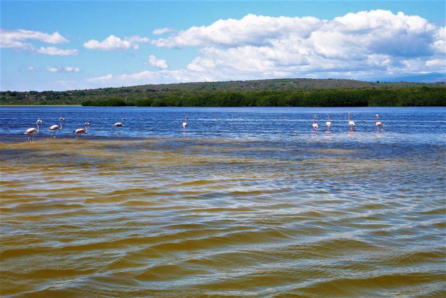 Laguna Oviedo