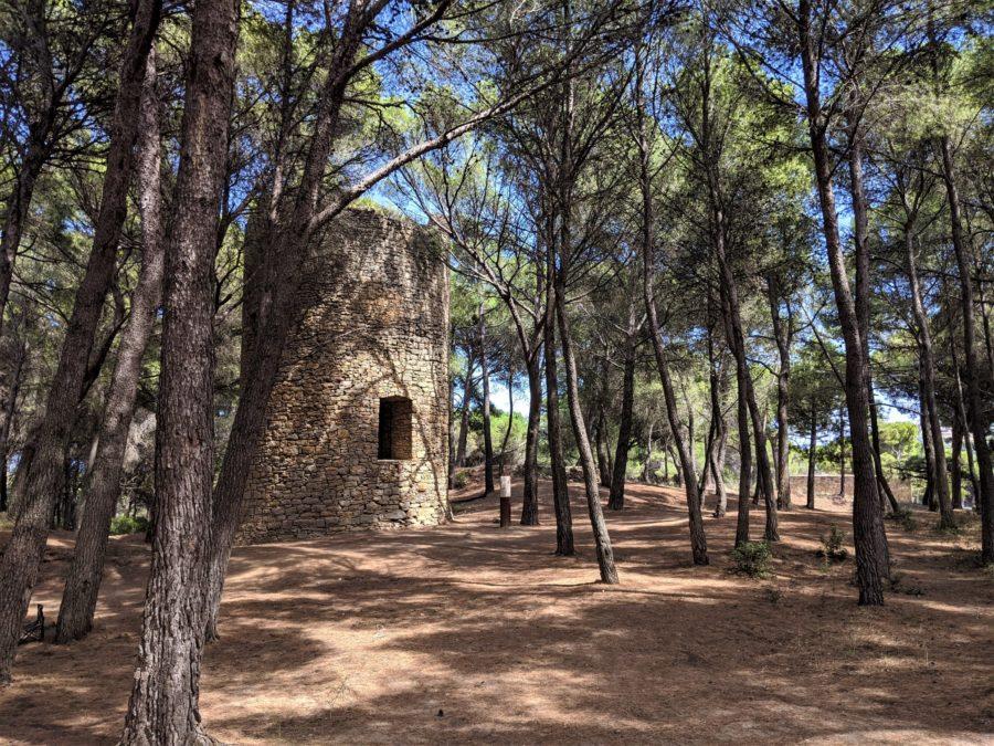 Área recreativa torre de la Mora