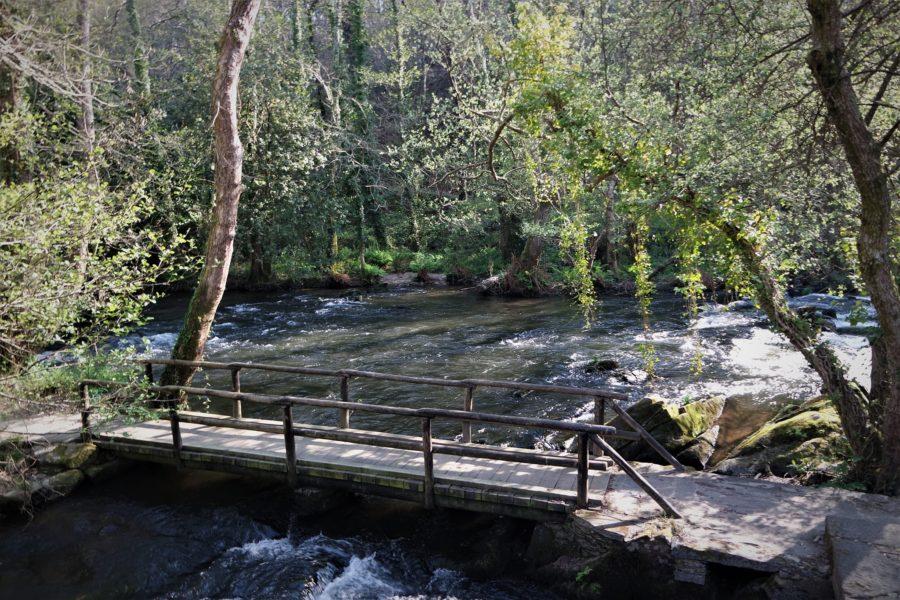Pasarelas de madera sobre el río Anllons