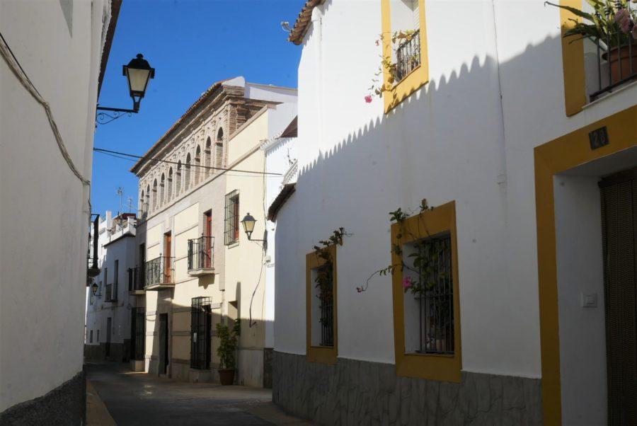 Calle Granada, palacio de los Moya