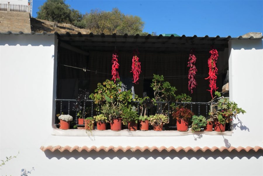 Casas en Laujar de Andarax