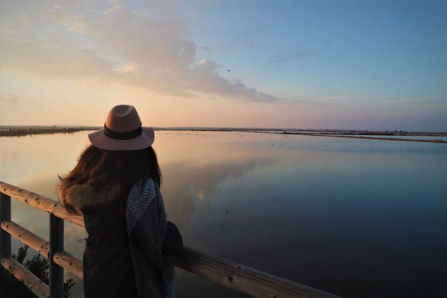 Las marismas del Odiel, Huelva