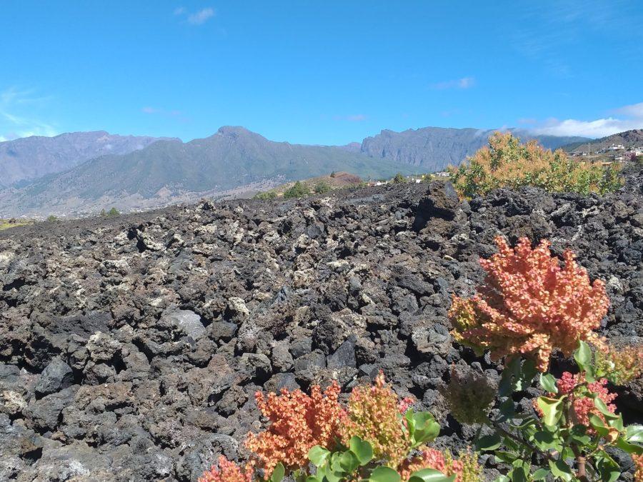 Silueta de Tanausú en La Palma