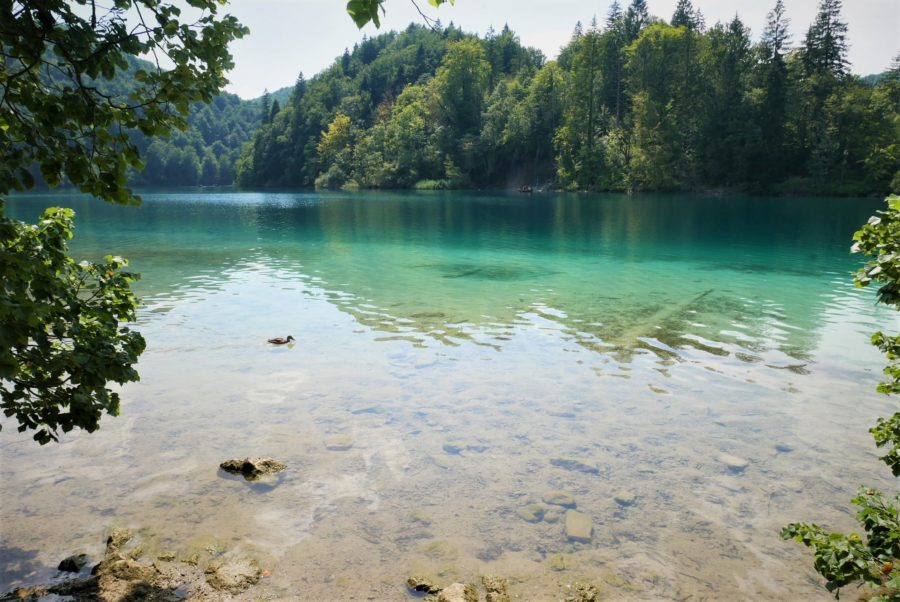 visitar los lagos de Plitvice, Croacia