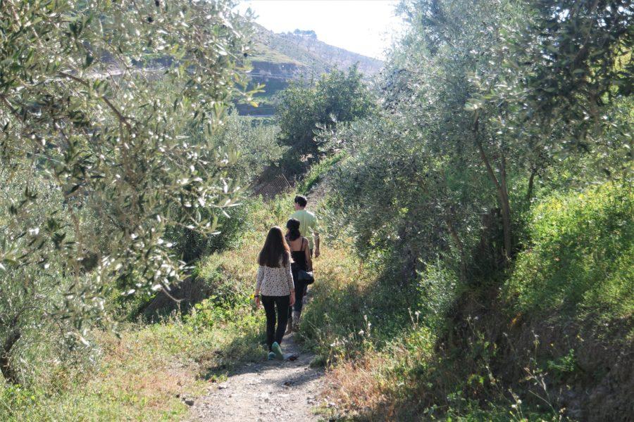 Caminos de Sedella