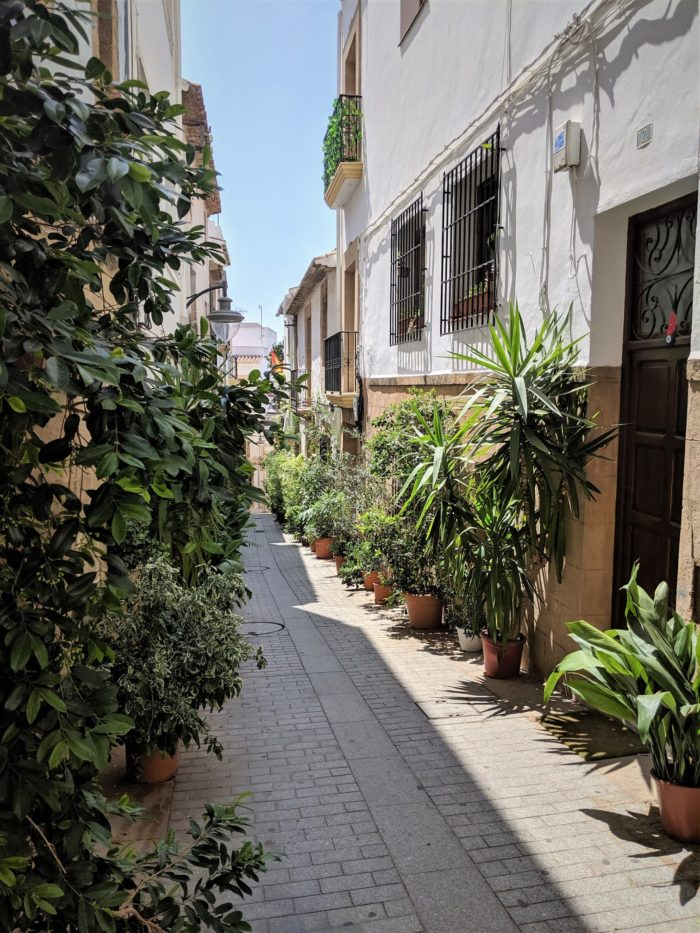 Calles con macetas en el centro de Jávea