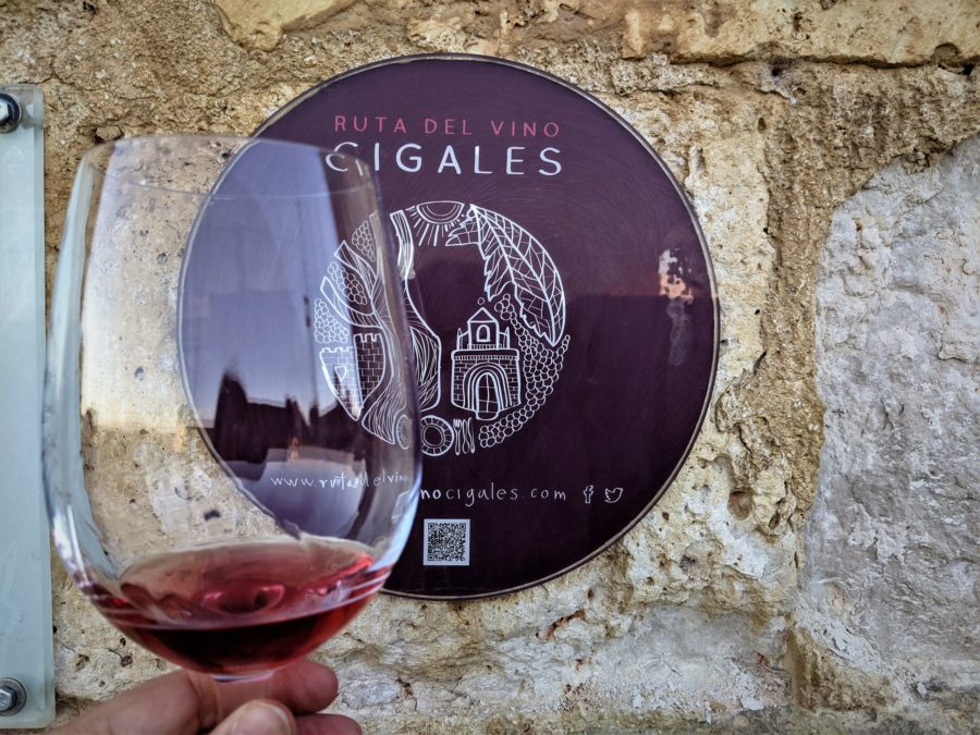 Cata de un rosado en la Ruta del vino Cigales
