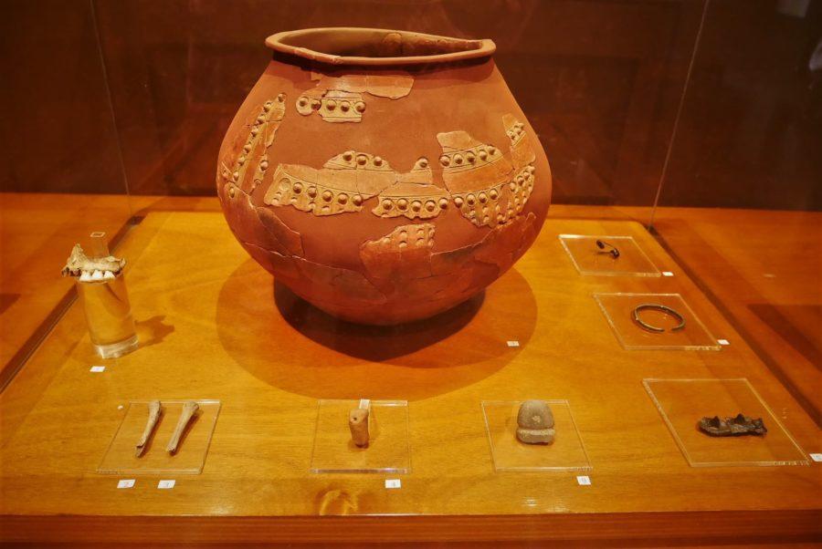Hallazgos arqueológicos en Campa Torres