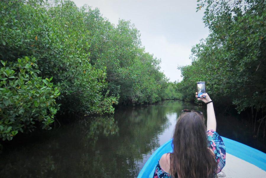 En barca por los manglares de San Blas