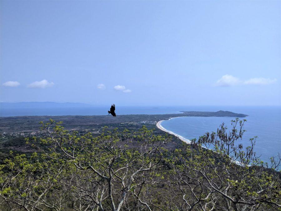 Vistas desde el cerro del Mono