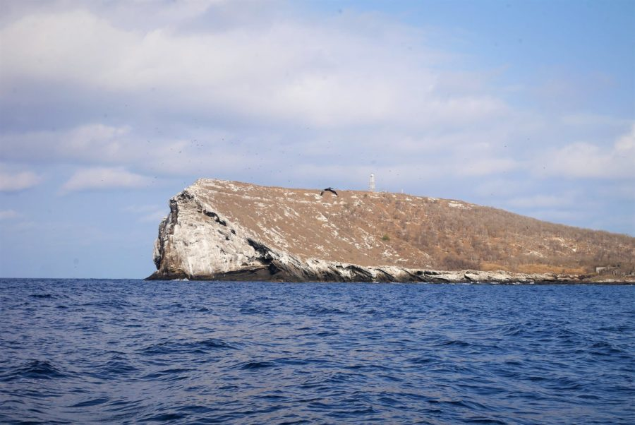 Costas de Isabel, Nayarit
