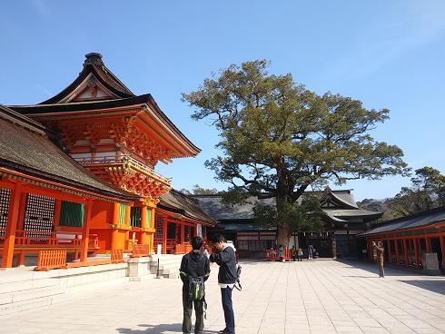 宇佐神宮,九州パワースポット,ランキング,1位,おすすめ,地図,アクセス,交通機関,神社,歴史,観光,佐世保,占い,バー