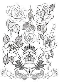 Flash rose fait par Wan