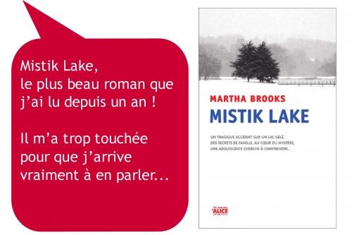 amelie-etrennes-2011-mistik-lake.jpg