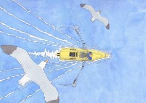 Le Breizh Glace dessiné par Hugo Lettelier