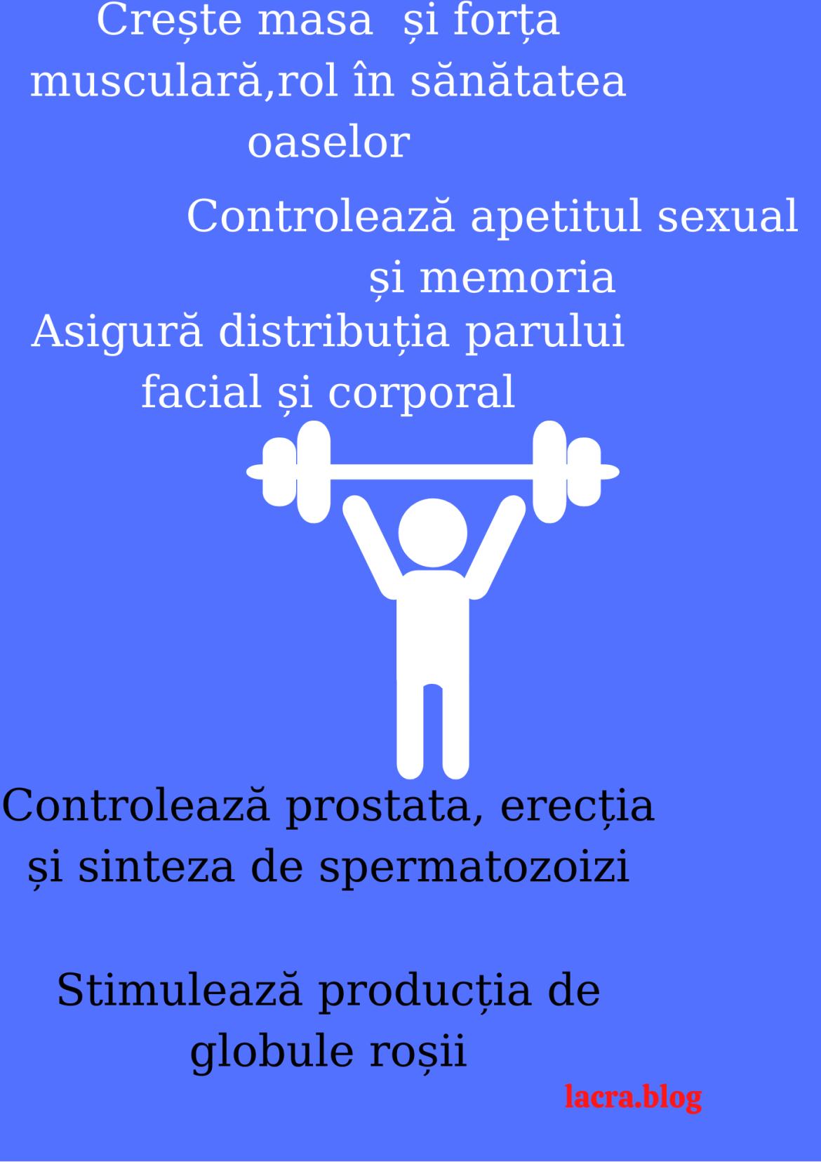 Andropauza – menopauza masculină