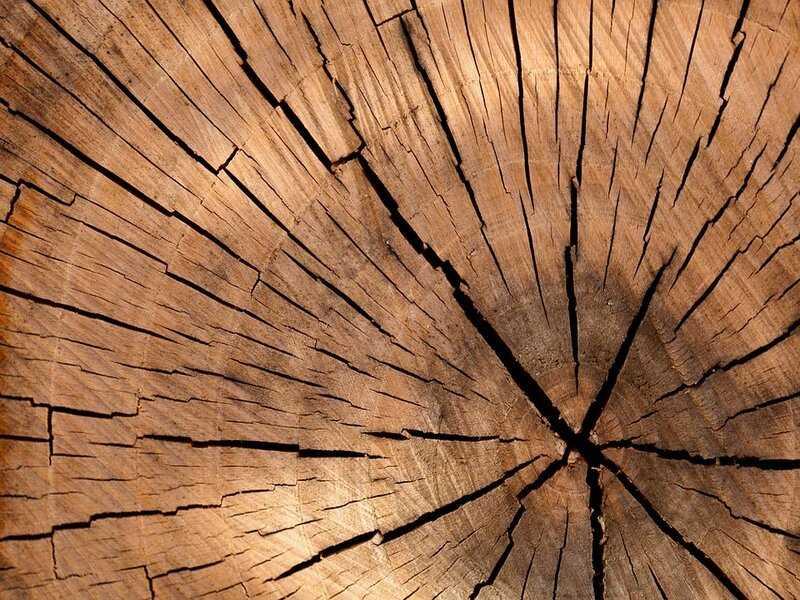 soñar con madera