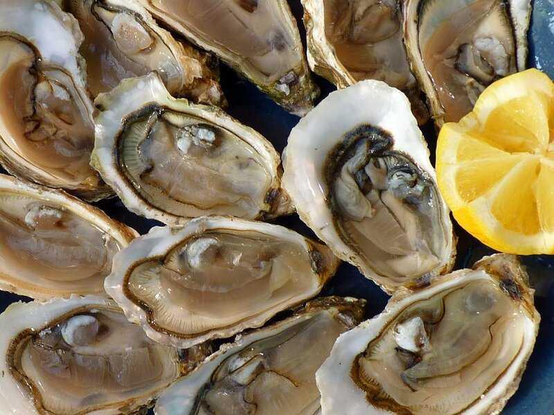 soñar con ostras