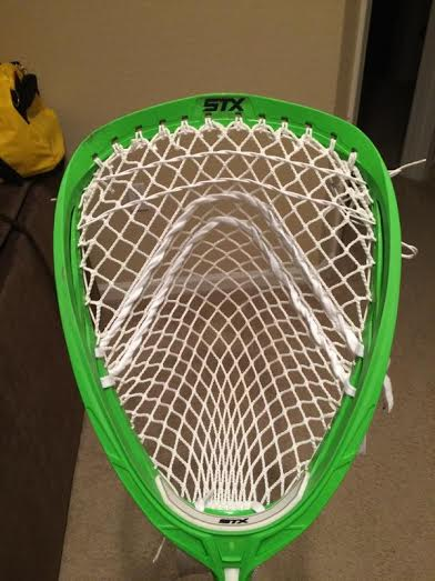 Grizzly Mesh 1
