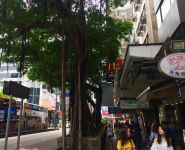 FB shop to let on Hillwood Road, Tsim Sha Tsui - In junction to Nathan Road, HK