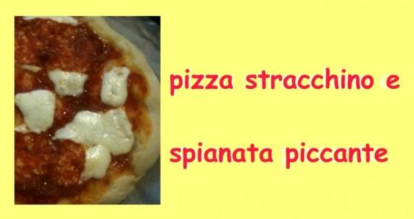 pizza, stracchino, lievito, spianata,olio