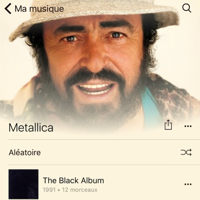Metallicarotti