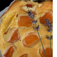 Terra di confine, dolce francese: Fiadone alle Albicocche