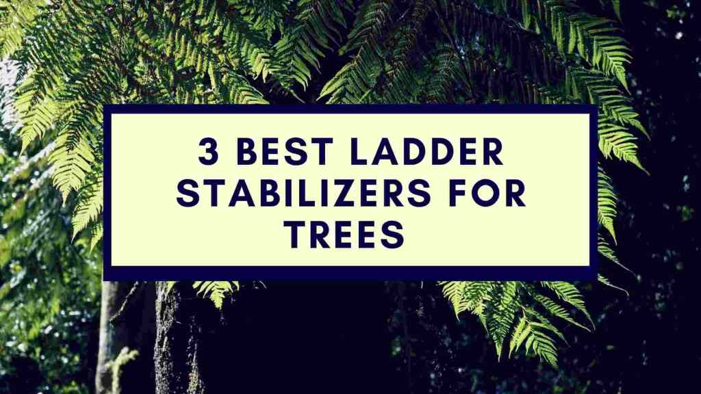 Ladder Stabilizers For Trees