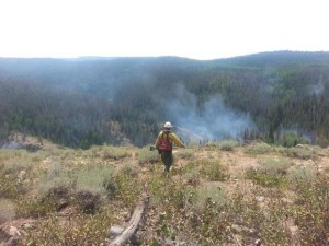 Firefighter heading toward fire USFS photo by Kassidy Kern