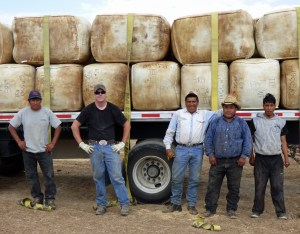 Filo, trucker, Antonio, Pepe and Jenri with the loaded wool truck