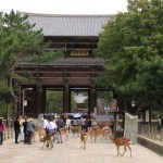 "Kegon Daihonzan ""Todaiji"" Let's play with the deer while admission the Great Buddha of Nara like at the Hall of the Great Buddha"