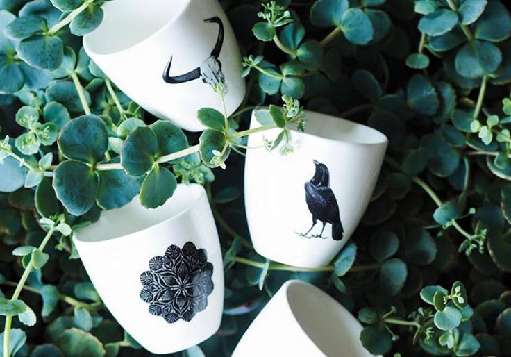 plantes vertes et tasses motifs n et b