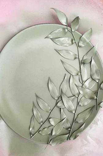 zoom assiette colorée végétale-diy-ldp
