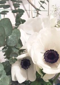 fleur et eucalyptus la délicate parenthèse