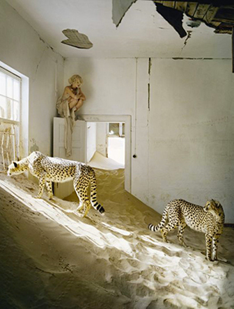 jaguar tim walker inspiration