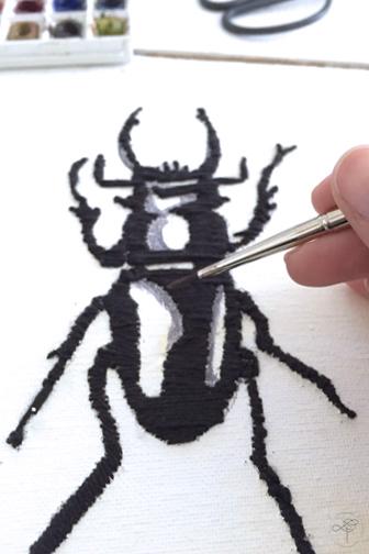 insecte aquarelle cabinet de curiosité
