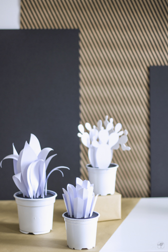 DIY cactus paper la delicate parenthese