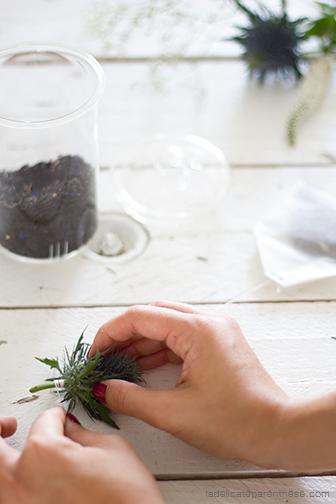 Sachets de thé en fleur, fait main, chardon et bleuet