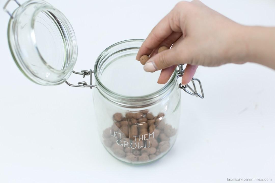 détourner des bocaux en terrarium Ikea hack