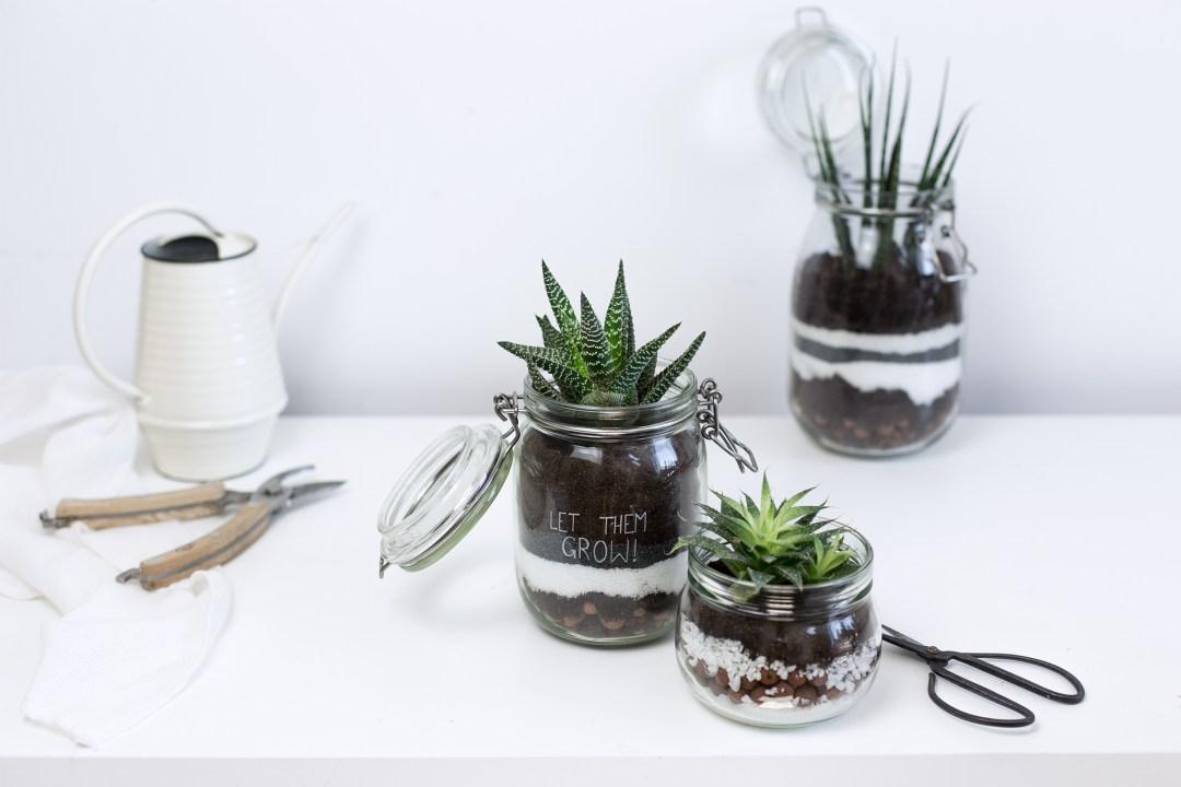 diy d tourner des bocaux en terrariums la d licate parenth se diy d co et inspiration d co. Black Bedroom Furniture Sets. Home Design Ideas
