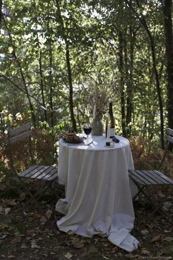 Diner automnal improvisé en pleine forêt