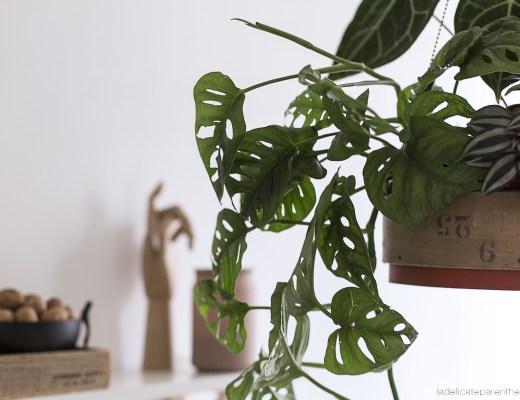 Suspension tamis création végétale DIY