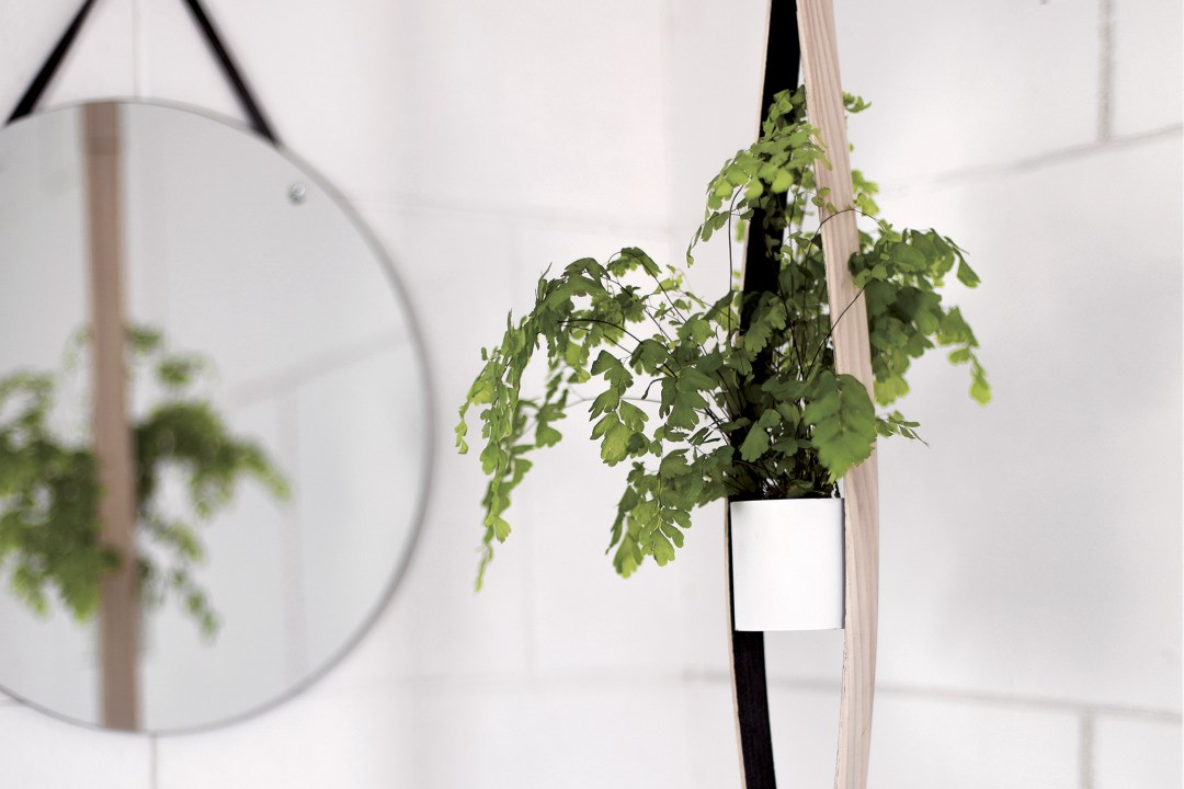 hanging plant express DIY